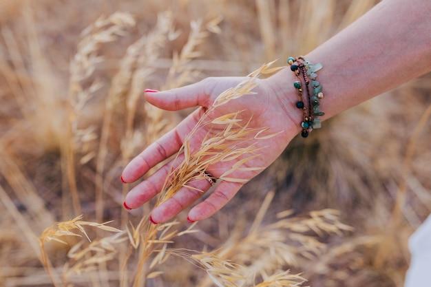 Close-up vista da mão de uma mulher tocando trigo amarelo ao pôr do sol