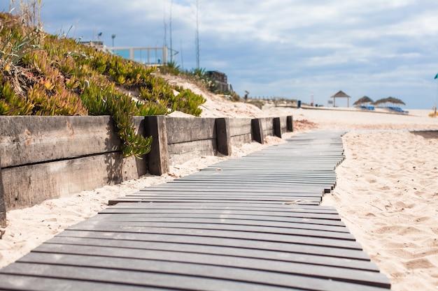 Close-up, vista, de, um, tábua madeira, caminhada, praia