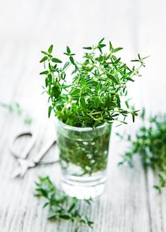 Close-up vista do ramo de tomilho. tomilho verde em um copo
