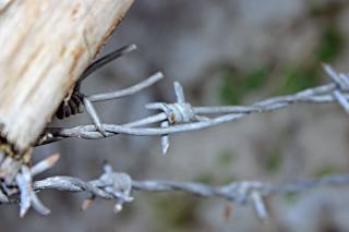 Closeup arame farpado