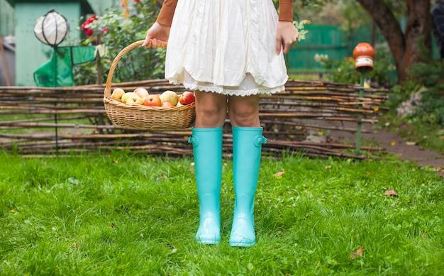 Closeup cesta com maçãs amarelas, vermelhas e botas de borracha na jovem