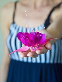 Closeup da mão de uma mulher bonita com flor roxa