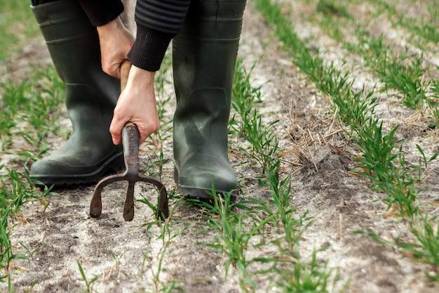Closeup das mãos do agricultor, enxada e campo na primavera