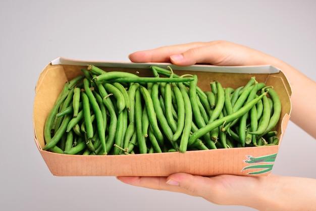 Closeup de bando de feijão verde fresco cru na mão da mulher copie o espaço