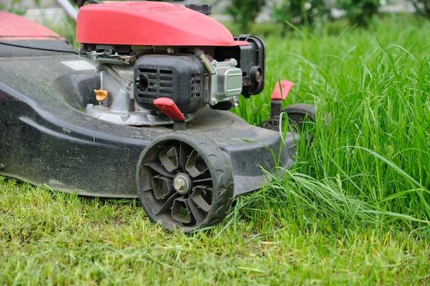Closeup de cortador de grama, cortar a grama verde, pátio da cidade