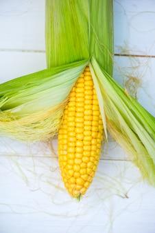 Closeup de espiga de milho amarelo sobre fundo branco, vista superior