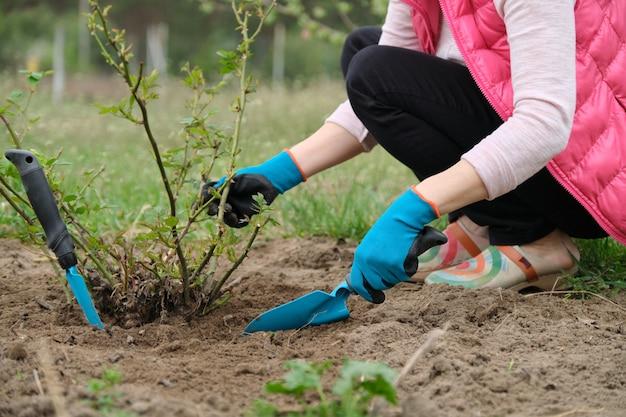 Closeup de jardineiros mão em luvas de proteção com ferramentas de jardim