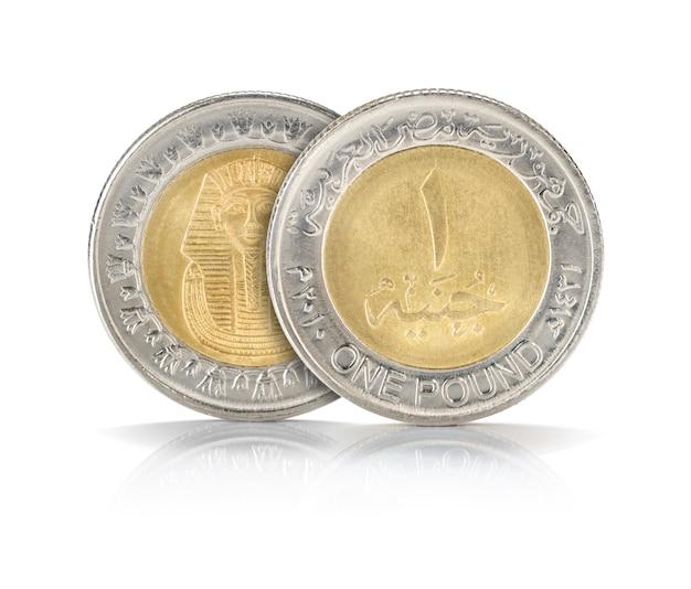 Closeup de libra egípcia