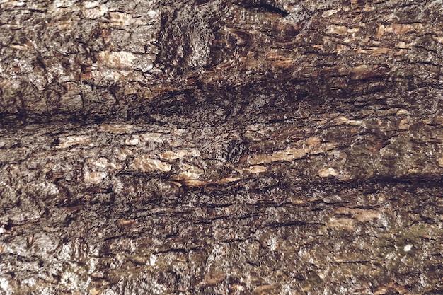 Closeup, de, madeira, textura, fundo