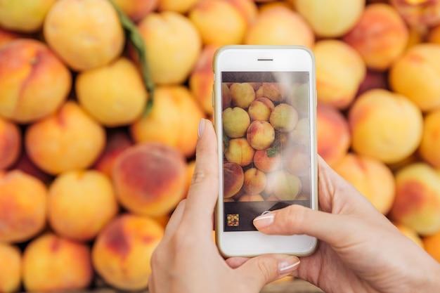 Closeup de mãos segurando um celular e tirando fotos de pêssegos frescos