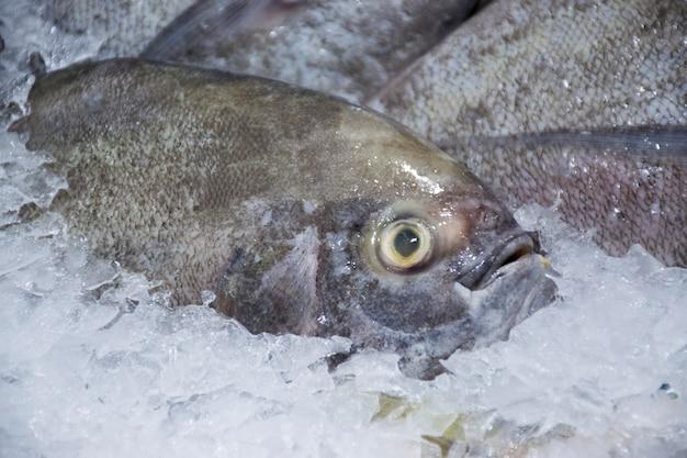Closeup de mercado de peixe fresco preto pomfret no gelo
