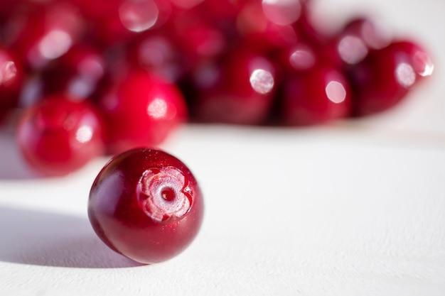 Closeup de mirtilo maduro. colheita de frutas, alimentos orgânicos saudáveis. tons de vermelho. acerola, foxberry, mirtilo vermelho.