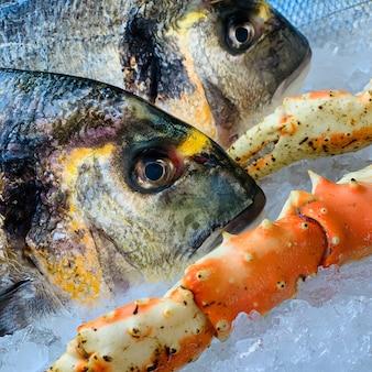 Closeup de peixe perto de pernas de caranguejo no gelo