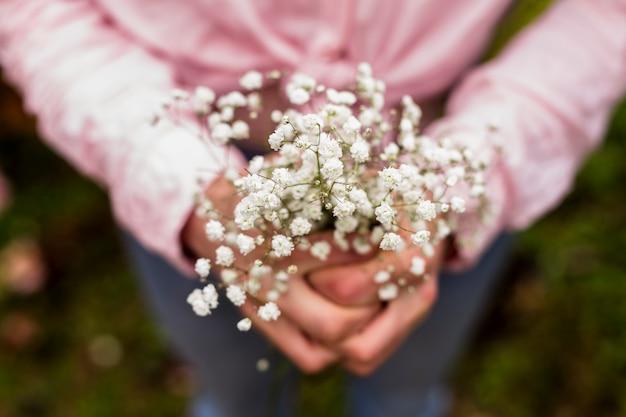 Closeup, de, pequeno, flores brancas