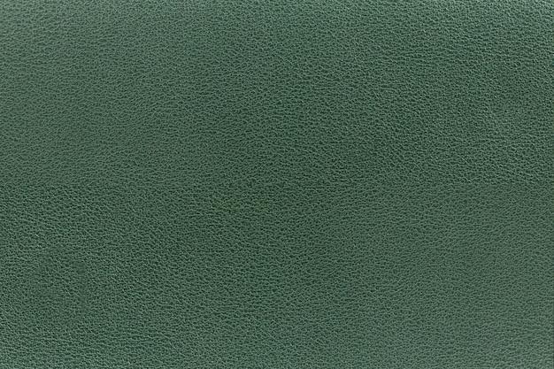 Closeup de superfície de couro verde