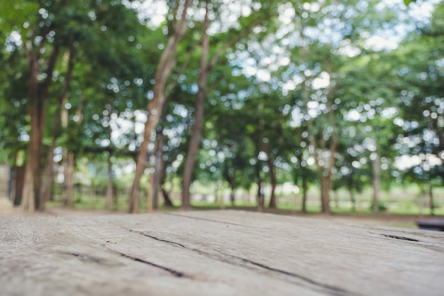 Closeup desfocar a imagem de uma mesa de madeira com árvore no fundo
