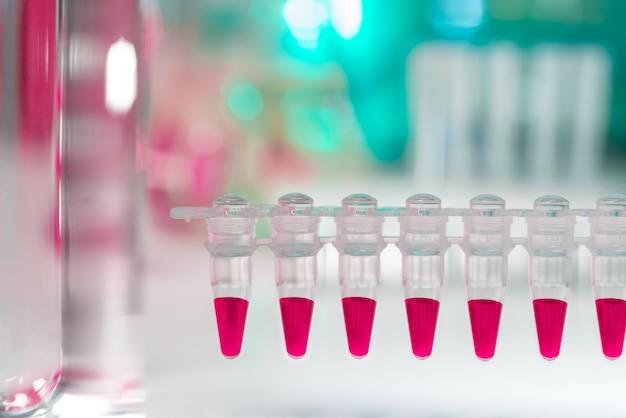 Closeup em tubos de plástico para análise de dna com pcr