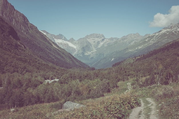 Closeup exibição de cenas de montanhas no parque nacional dombai, cáucaso, rússia, europa. paisagem de verão, clima ensolarado, céu azul dramático e dia ensolarado