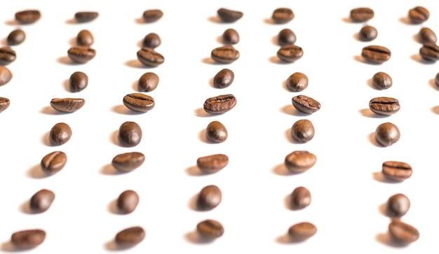 Closeup grãos de café cópia espaço, branco de volta à terra