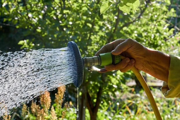 Closeup regando plantas de jardim usando um aspersor manual