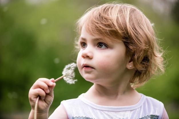 Closeup, retrato, de, um, criança, com, um, dandelion, em, mãos, andar, ao ar livre