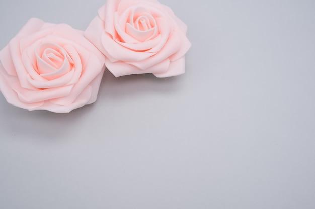 Closeup tiro de duas rosas rosa isoladas em um fundo azul com espaço de cópia