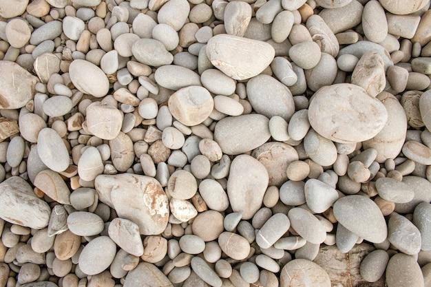 Closeup tiro de fundo branco de seixos pequenos