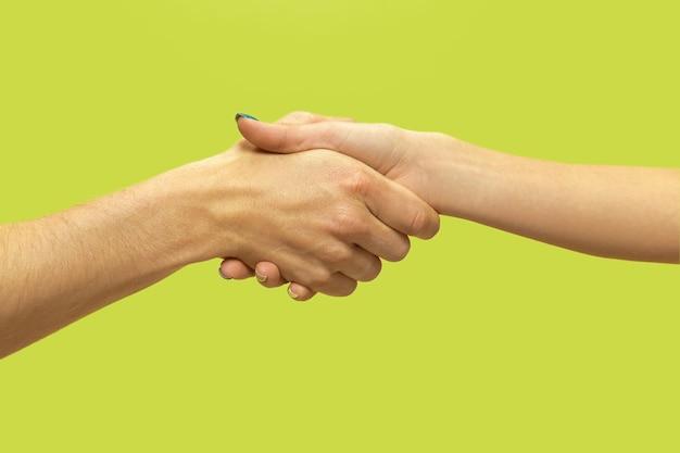 Closeup tiro de humano de mãos dadas isolado no verde