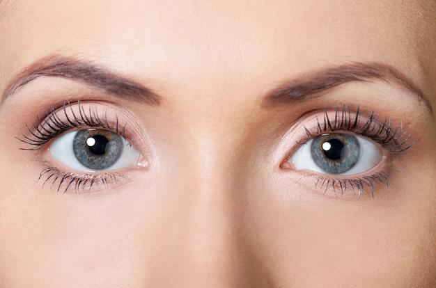 Closeup tiro de olhos de mulher com maquiagem de dia. cílios longos