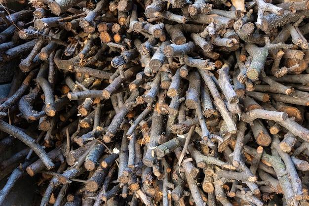 Closeup tiro de toras de árvores cortadas e secas organizadas em uma grande pilha