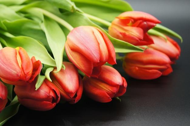 Closeup tiro de um buquê de rosas laranja tirado em um estúdio