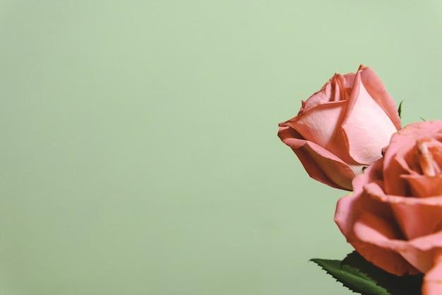 Closeup tiro de um lindo arranjo floral com rosas em um fundo branco com espaço de cópia
