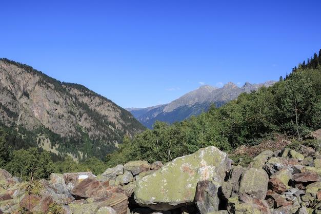 Closeup vista da cena de montanhas no parque nacional de dombay, cáucaso, rússia, europa. céu azul dramático e paisagem ensolarada de verão