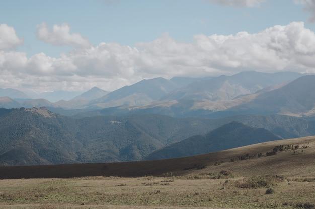 Closeup vista montanhas e cenas de vale no parque nacional dombai, cáucaso, rússia, europa. paisagem de verão, clima ensolarado, céu azul dramático e dia ensolarado