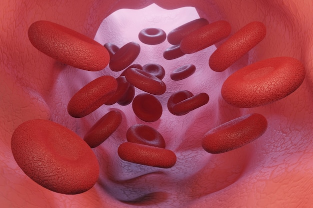 Coágulo de glóbulos vermelhos