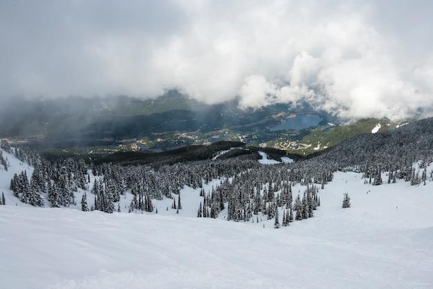 Coberto neve, evergreen, árvores, ligado, montanha, com, vila, em, a, fundo, whistler, columbia britânica,