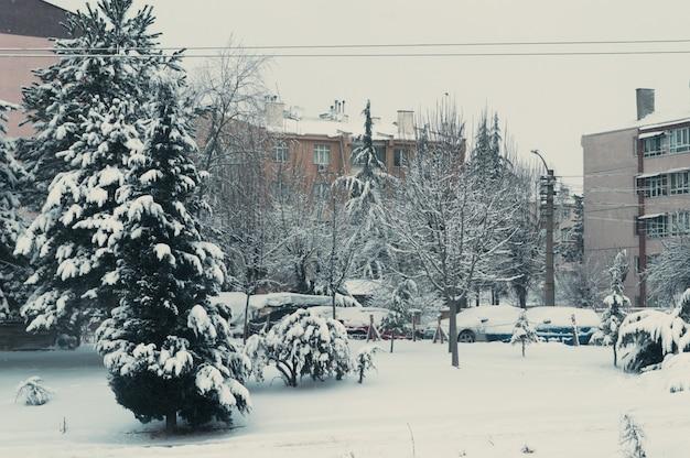 Cobertura de neve no bairro residencial