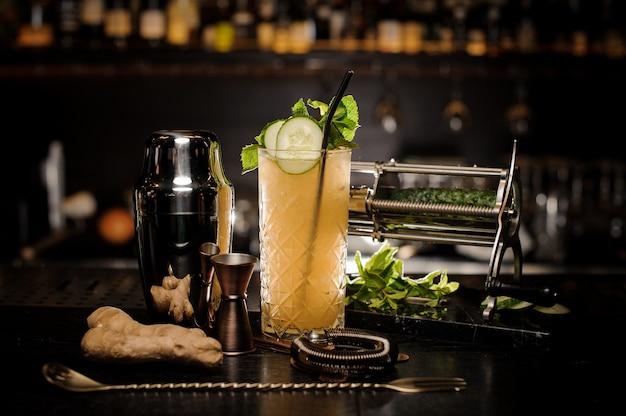 Cocktail de verão saboroso fresco e azedo com gengibre, pepino e hortelã