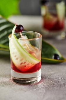 Cocktail de vodka com mirtilos em doses com um enfeite com fatias de pepino e mirtilos em palitos