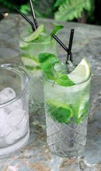 Cocktail gin tonic ou mojito em copo com hortelã, gelo, limão no fundo de folhas tropicais.
