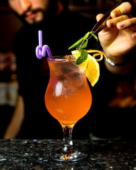 Cocktail refrescante com cubos de gelo, fatia de limão e folhas de hortelã