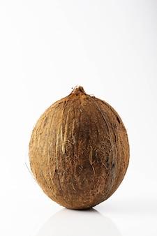Coco com fundo branco