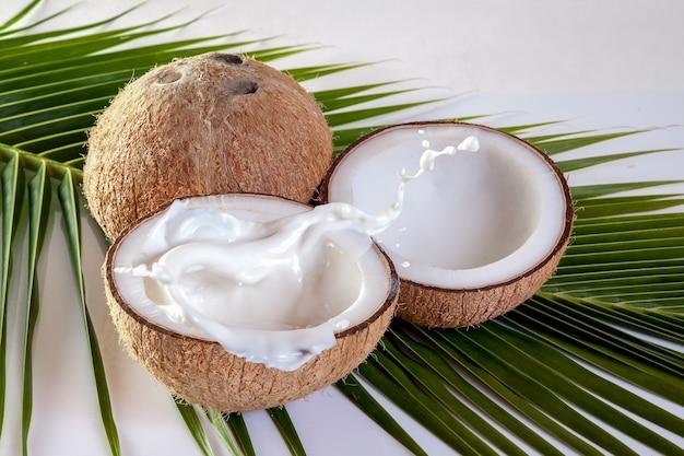 Coco com leite no fundo da folha de coco
