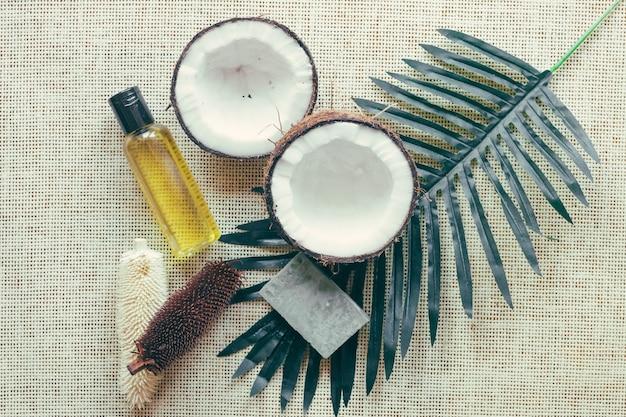 Coco e folha de palmeira