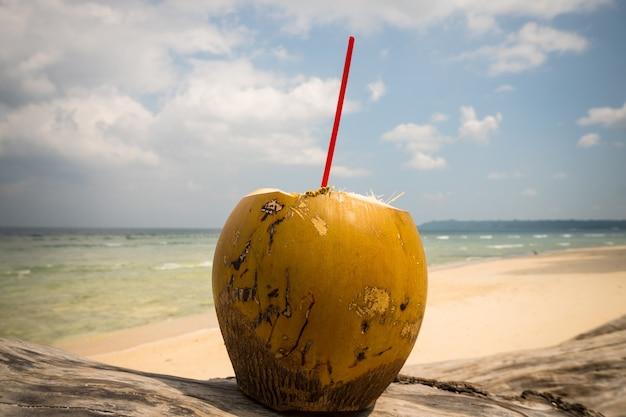 Coco na praia. coco fresco com canudo. beba leite de coco na praia. sudeste da ásia. suco de fruta saudável que mata bem a sede