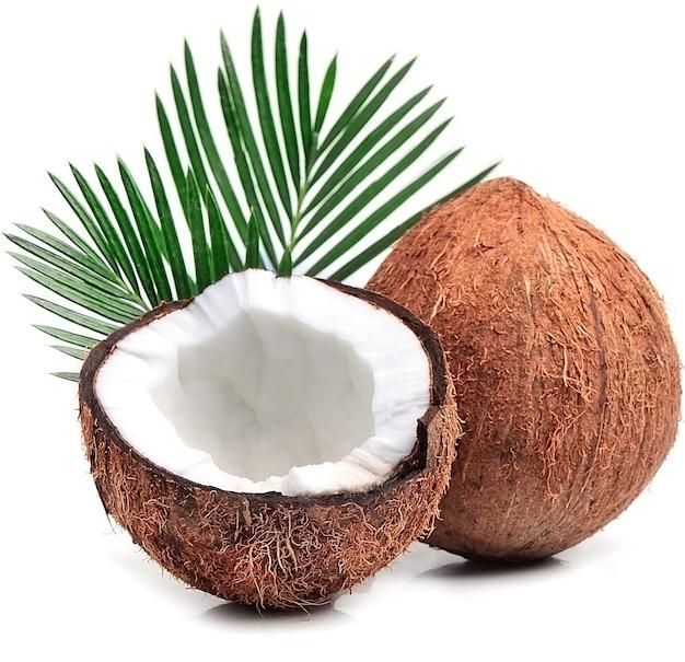 Cocos com folhas em branco