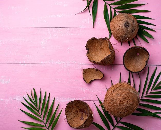Cocos e folhas de palmeira em rosa
