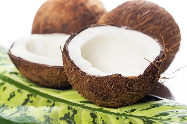 Cocos em branco