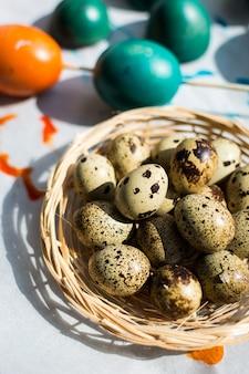 Codorna de páscoa e ovos coloridos regulares
