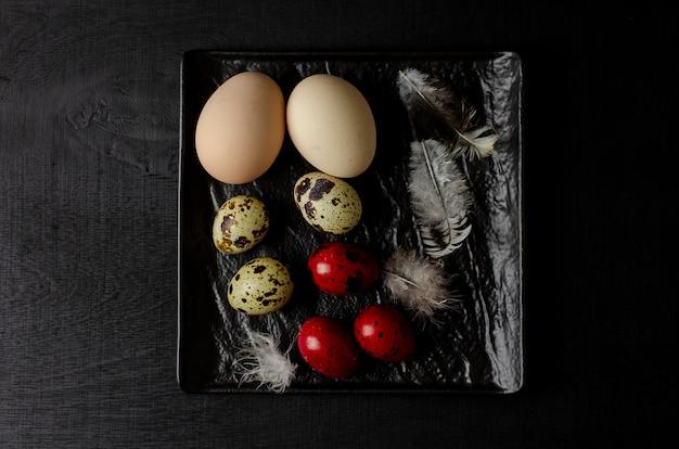 Codorniz e chiken ovos e penas em um fundo preto.